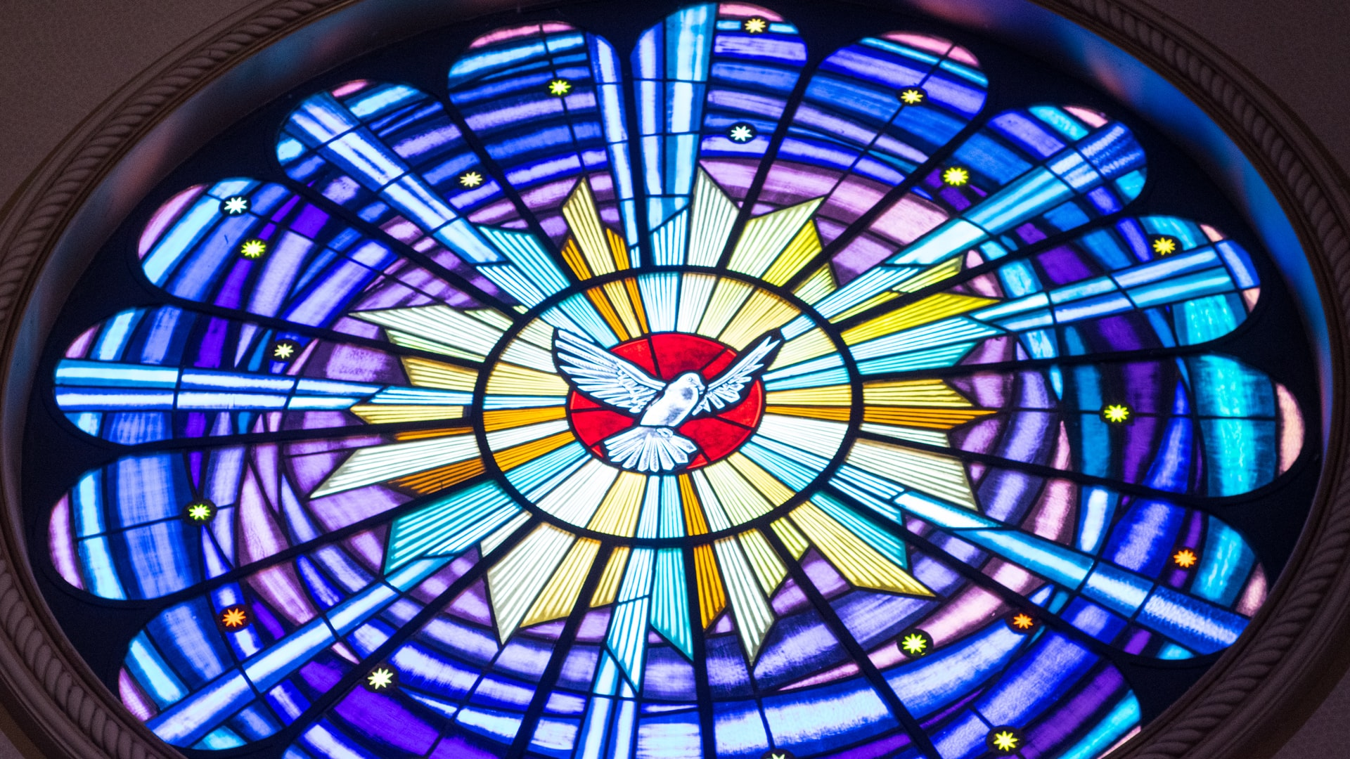 Latest message from Rev. Ann McCool